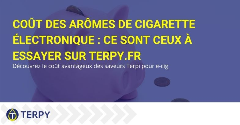 Découvrez le coût des arômes pour cigarettes électroniques et les saveurs à essayer, sur Terpi.fr