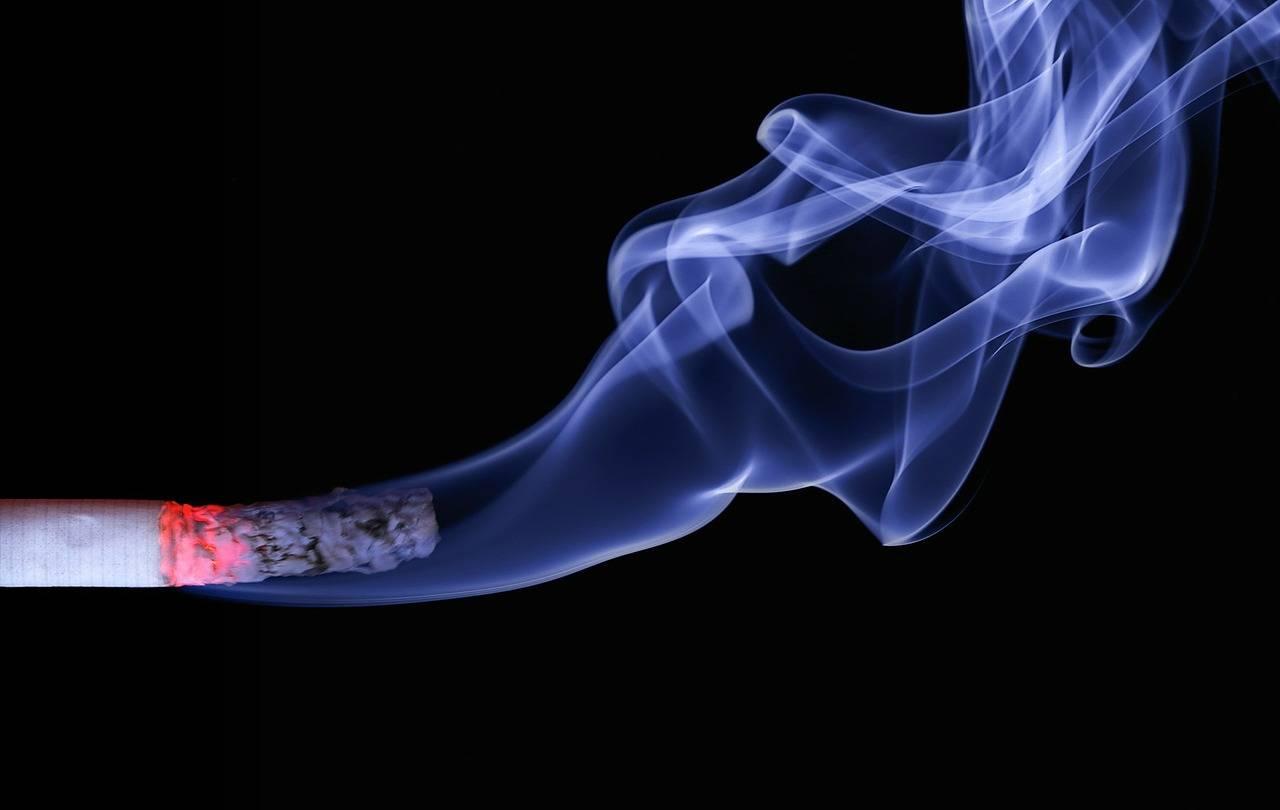 La fumée de cigarette est hautement toxique
