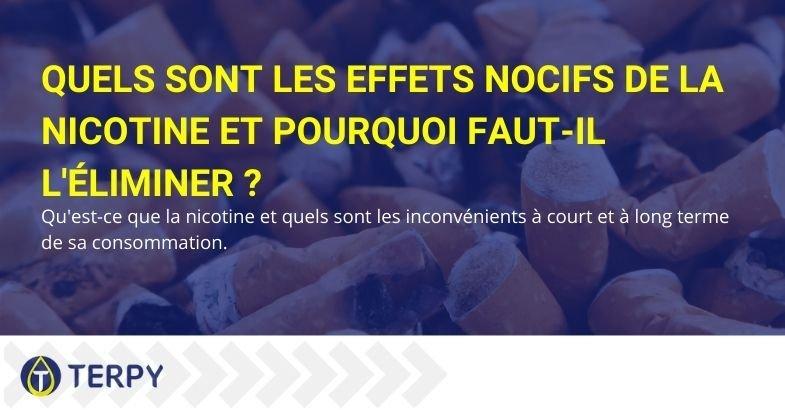 Quels sont les méfaits de la nicotine et pourquoi vaut-il mieux l'éliminer définitivement ?